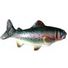 *Last one* Rainbow Trout Antenna Topper