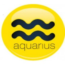*Sale* Aquarius Sign Antenna Ball