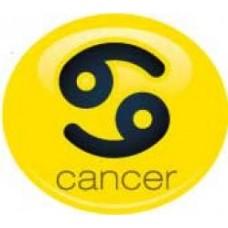 *Sale* Cancer Sign Antenna Ball