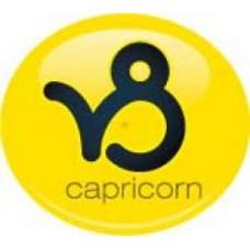 *Sale* Capricorn Birth Sign Antenna Ball