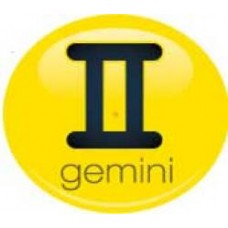 *Sale* Gemini Sign Antenna Ball