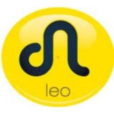 *Sale* Leo Sign Antenna Ball