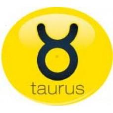 *Sale* Taurus Sign Antenna Ball